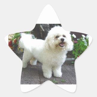 Bichon Frisé Dog Star Sticker