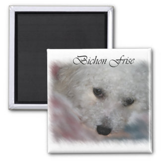 Bichon Frise Gifts Square Magnet
