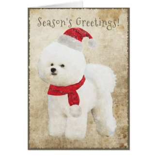 Bichon Frise Holiday Card