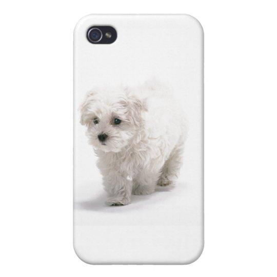 Bichon Frise iPhone 4 Case