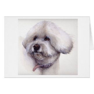 Bichon Frise Painted in Watercolour Card