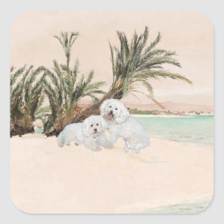 Bichon Frise Palmy Beach Square Sticker