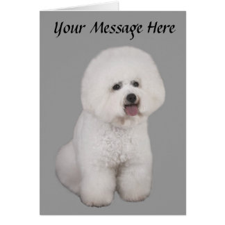 Bichon Frise Precious Greeting Card