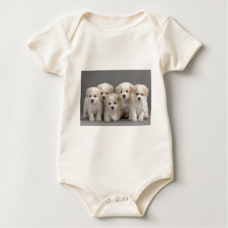 Bichon Frisé Puppies Baby Bodysuit