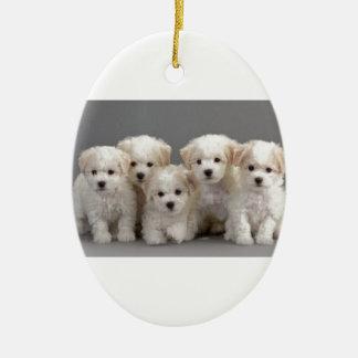 Bichon Frisé Puppies Ceramic Oval Ornament