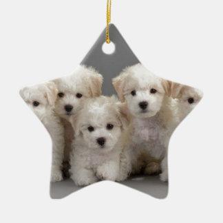 Bichon Frisé Puppies Ceramic Star Ornament