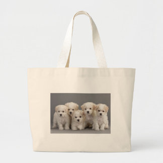 Bichon Frisé Puppies Large Tote Bag