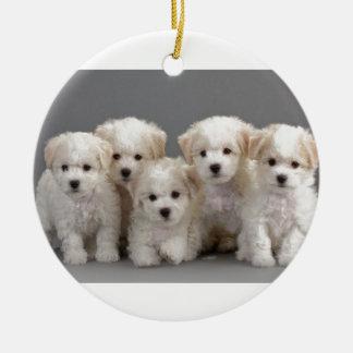 Bichon Frisé Puppies Round Ceramic Ornament