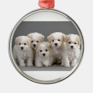 Bichon Frisé Puppies Silver-Colored Round Ornament