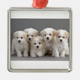 Bichon Frisé Puppies Silver-Colored Square Ornament