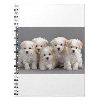Bichon Frisé Puppies Spiral Note Book
