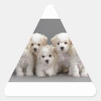 Bichon Frisé Puppies Triangle Sticker