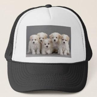 Bichon Frisé Puppies Trucker Hat