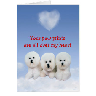 Bichon Frise Puppy Love Card