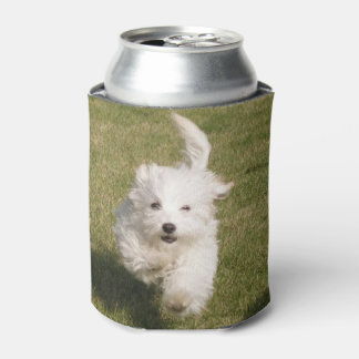 Bichon Frisé running.png Can Cooler