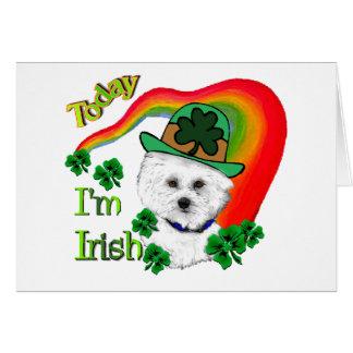 Bichon Frise St. Patrick's Day Card