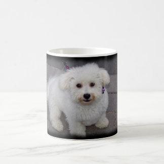 bichon mug
