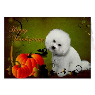 Bichon Thanksgiving Card