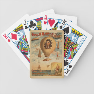 Bicycle Chute Playing Cards
