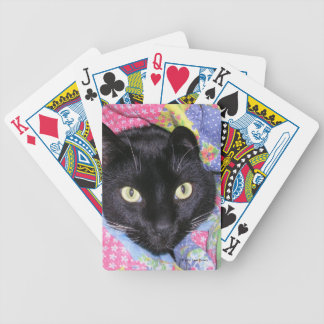 Bicycle Playing Cards: Funny Cat in Blankets Bicycle Playing Cards