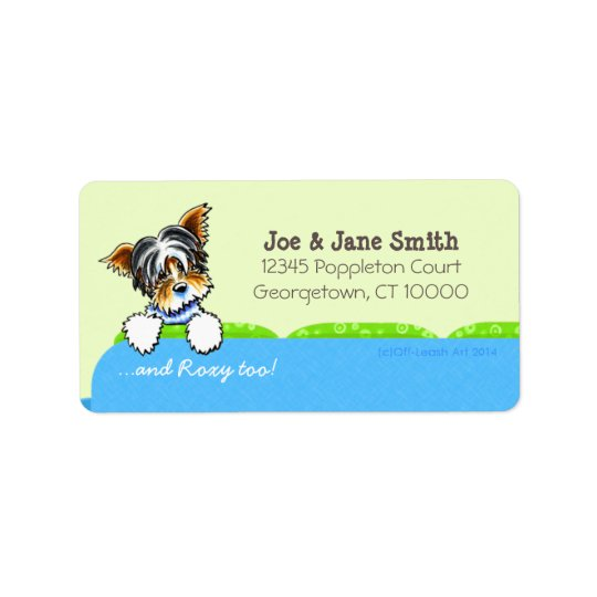 Biewer Yorkie Blue Couch Pet Name Personalized