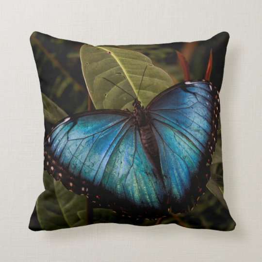 Big,beautiful , blue butterfly throw pillow