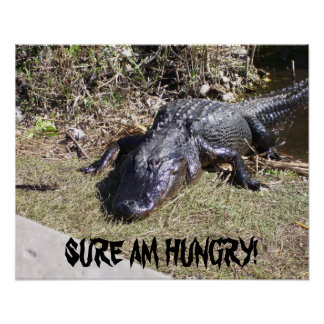 Big Black Alligator Poster