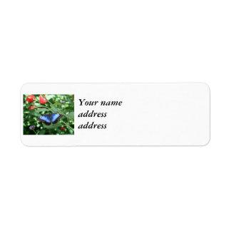 Big Blue Butterfly 2 Return Address Label