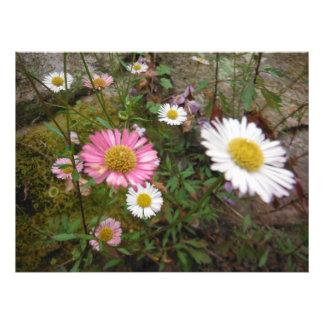 big bright flowers garden photo print