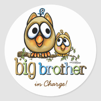 Big Brother - Baby Bro Owls Round Stickers