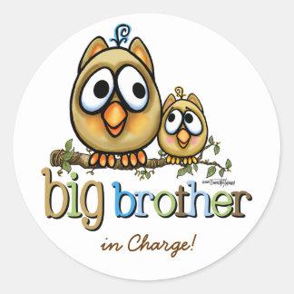 Big Brother - Baby Bro Owls Round Stickers