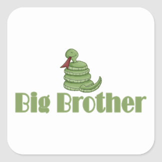Big Brother Silly Snake Stickers