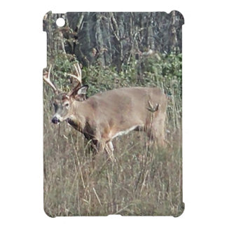 Big buck by james potvin cover for the iPad mini