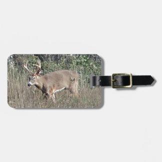 Big buck by james potvin luggage tag