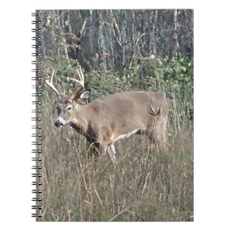 Big buck by james potvin notebook