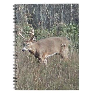 Big buck by james potvin spiral notebook
