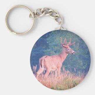 Big Buck Keychain