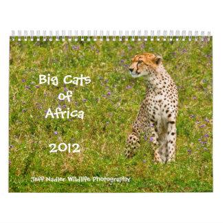 Big Cats of Africa 2012 Wall Calendar