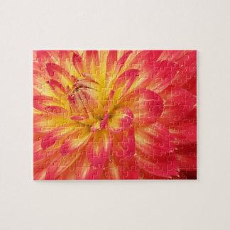 Big Colorful Dahlia 8x10 Jigsaw Puzzle