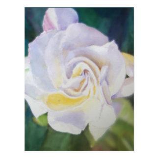 Big Creamy White Gardenia Postcard