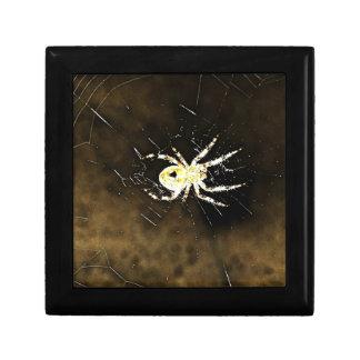 Big Creepy Spider on it's Web Keepsake Box