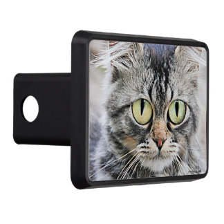Big eyes trailer hitch cover