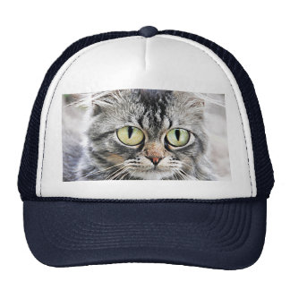 Big eyes trucker hat