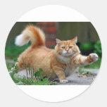 Big Fat Orange Cat Round Sticker