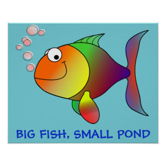 BIG FISH, LITTLE POND - Poster