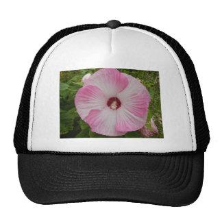 Big Flower Trucker Hat