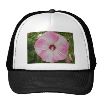 Big Flower Trucker Hat