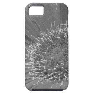 Big Flower without Color iPhone 5 Covers