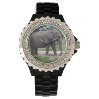 Big Gray Elephant Wristwatches