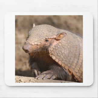 Big hairy armadillo mouse pad